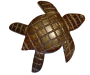Coconut-turtle-icon